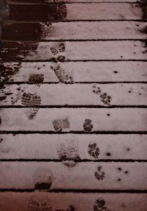 SnowTracks