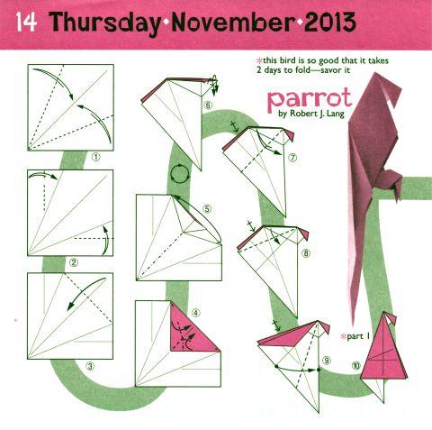 parrot1 1