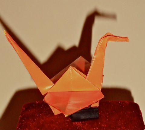 OrangeCrane
