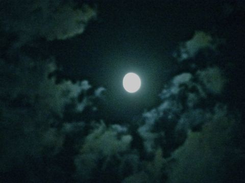 Last June Moon